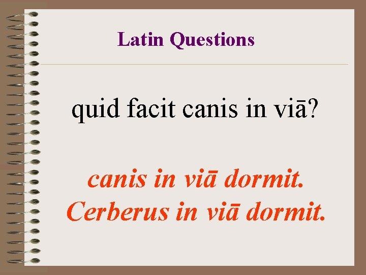 Latin Questions quid facit canis in viā? canis in viā dormit. Cerberus in viā