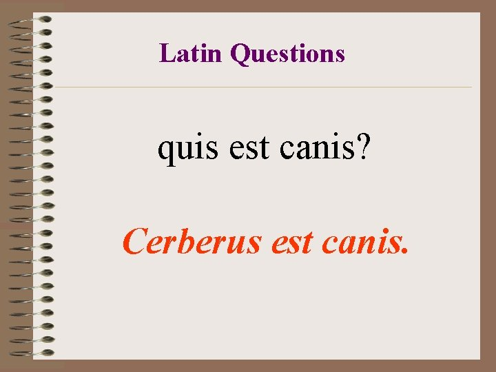 Latin Questions quis est canis? Cerberus est canis.