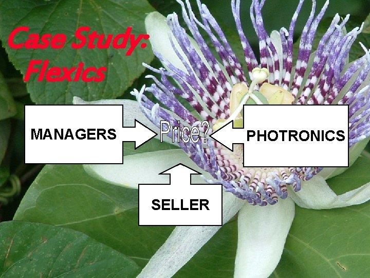 Case Study: Flexics MANAGERS PHOTRONICS SELLER Copyright © 2003 Ian H. Giddy Valuation 37