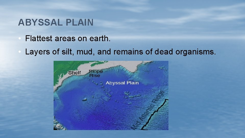 ABYSSAL PLAIN • Flattest areas on earth. • Layers of silt, mud, and remains