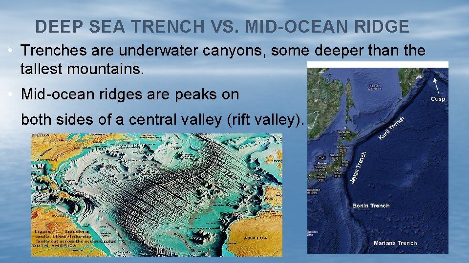 DEEP SEA TRENCH VS. MID-OCEAN RIDGE • Trenches are underwater canyons, some deeper than
