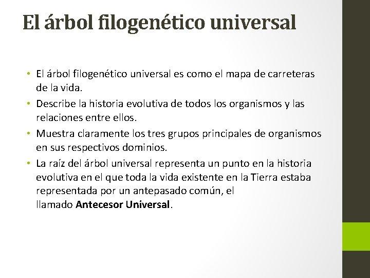 El árbol filogenético universal • El árbol filogenético universal es como el mapa de