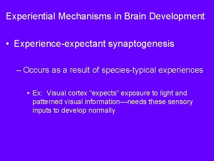 Experiential Mechanisms in Brain Development • Experience-expectant synaptogenesis – Occurs as a result of