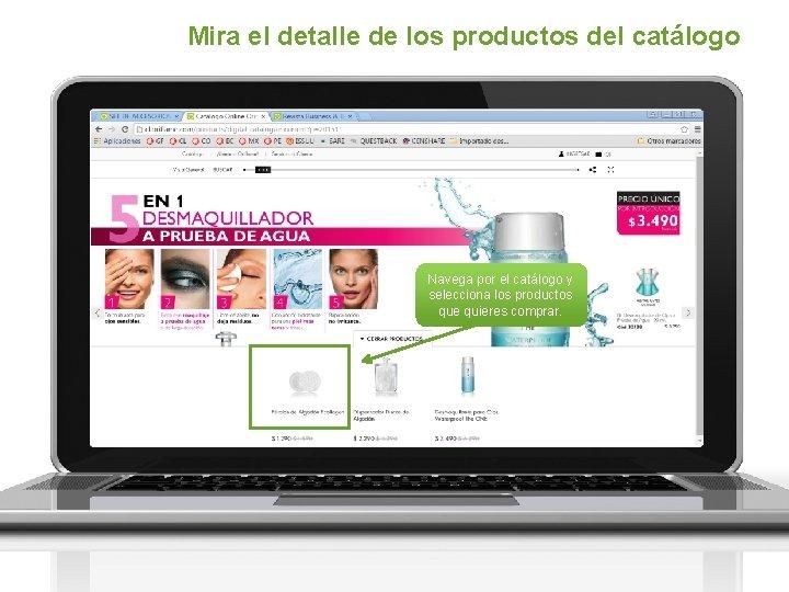 Mira el detalle de los productos del catálogo Navega por el catálogo y selecciona