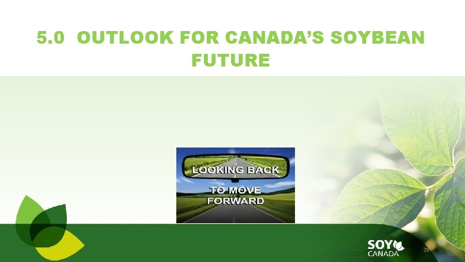 5. 0 OUTLOOK FOR CANADA'S SOYBEAN FUTURE 28