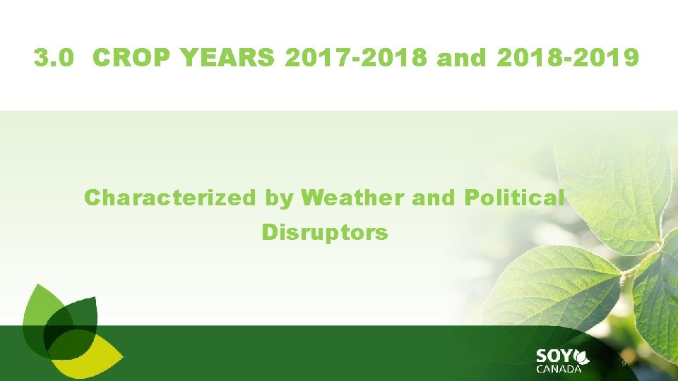 3. 0 CROP YEARS 2017 -2018 and 2018 -2019 Characterized by Weather and Political