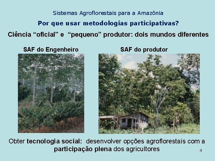 """Sistemas Agroflorestais para a Amazônia Por que usar metodologias participativas? Ciência """"oficial"""" e """"pequeno"""""""
