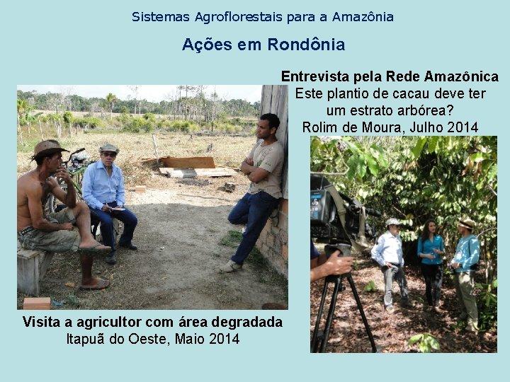 Sistemas Agroflorestais para a Amazônia Ações em Rondônia Entrevista pela Rede Amazônica Este plantio