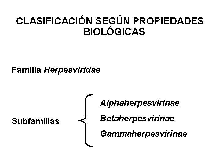 CLASIFICACIÓN SEGÚN PROPIEDADES BIOLÓGICAS Familia Herpesviridae Alphaherpesvirinae Subfamilias Betaherpesvirinae Gammaherpesvirinae
