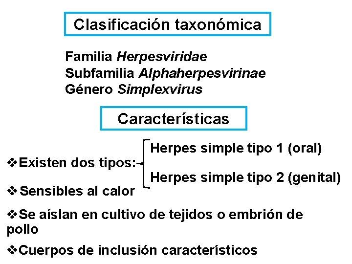 Clasificación taxonómica Familia Herpesviridae Subfamilia Alphaherpesvirinae Género Simplexvirus Características v. Existen dos tipos: v