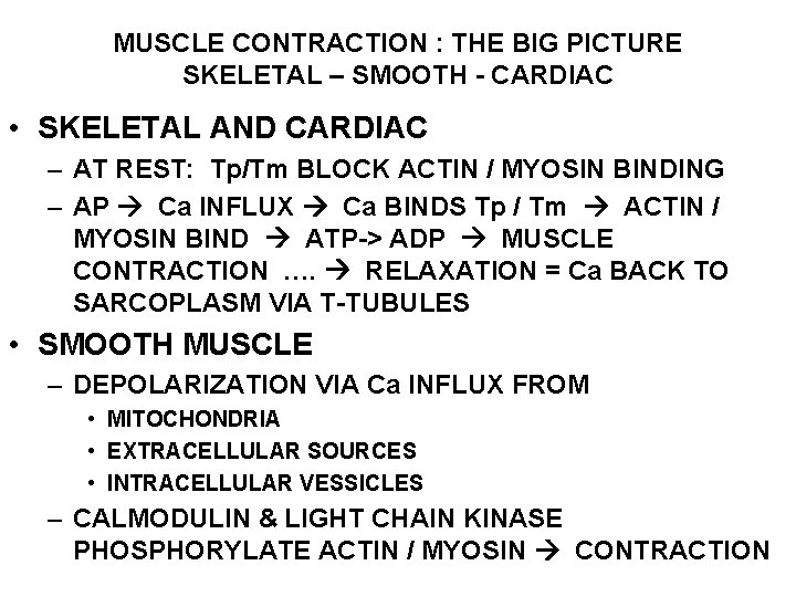 MUSCLE CONTRACTION : THE BIG PICTURE SKELETAL – SMOOTH - CARDIAC • SKELETAL AND