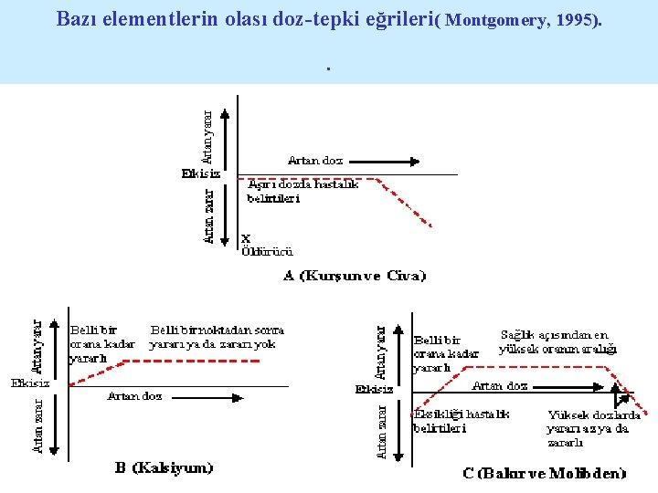 Bazı elementlerin olası doz-tepki eğrileri( Montgomery, 1995). .