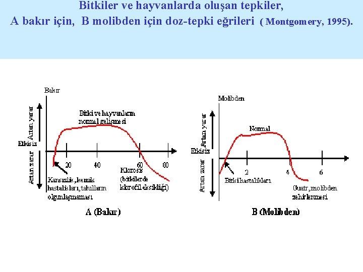 Bitkiler ve hayvanlarda oluşan tepkiler, A bakır için, B molibden için doz-tepki eğrileri (