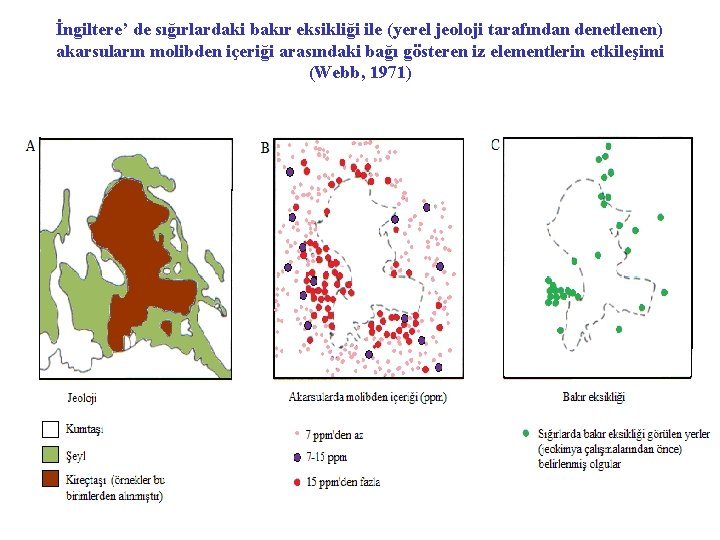 İngiltere' de sığırlardaki bakır eksikliği ile (yerel jeoloji tarafından denetlenen) akarsuların molibden içeriği arasındaki