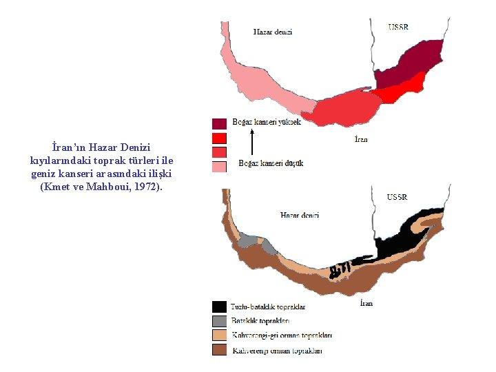 İran'ın Hazar Denizi kıyılarındaki toprak türleri ile geniz kanseri arasındaki ilişki (Kmet ve Mahboui,