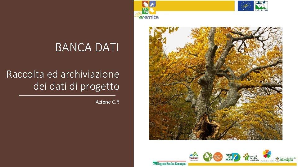 BANCA DATI Raccolta ed archiviazione dei dati di progetto Azione C. 6