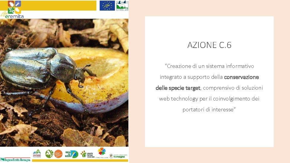 """AZIONE C. 6 """"Creazione di un sistema informativo integrato a supporto della conservazione delle"""