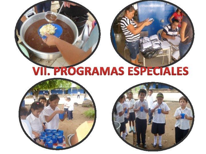 VII. PROGRAMAS ESPECIALES