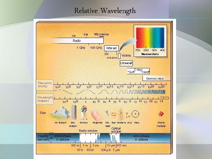 Relative Wavelength