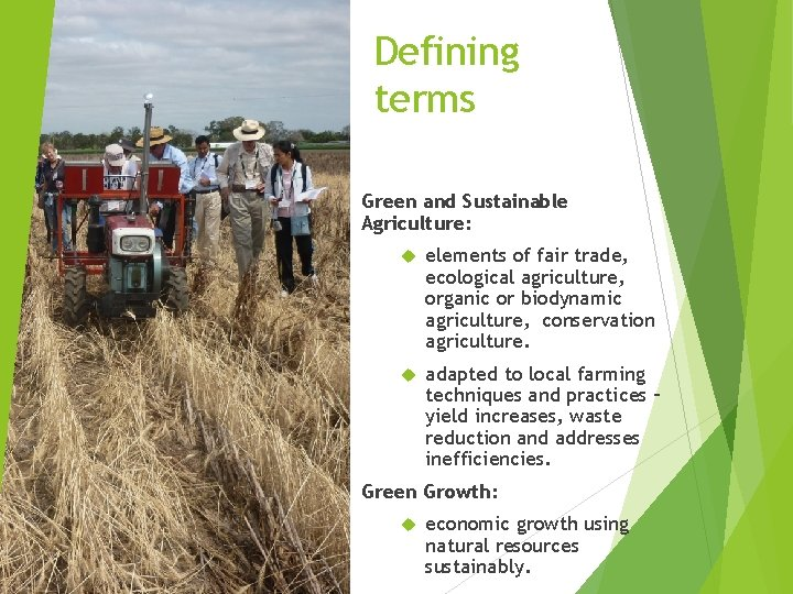 Defining terms Green and Sustainable Agriculture: elements of fair trade, ecological agriculture, organic or