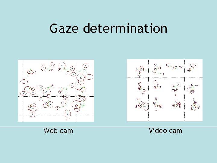 Gaze determination Web cam Video cam