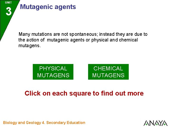 UNIT 3 Mutagenic agents Many mutations are not spontaneous; instead they are due to