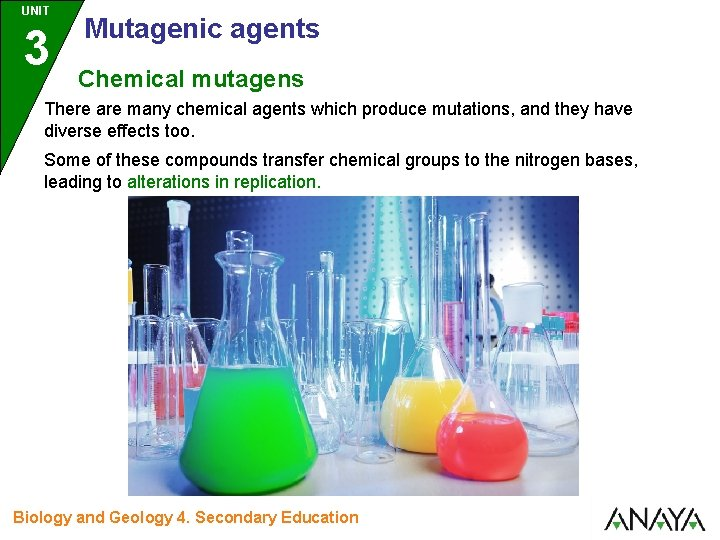 UNIT 3 Mutagenic agents Chemical mutagens There are many chemical agents which produce mutations,