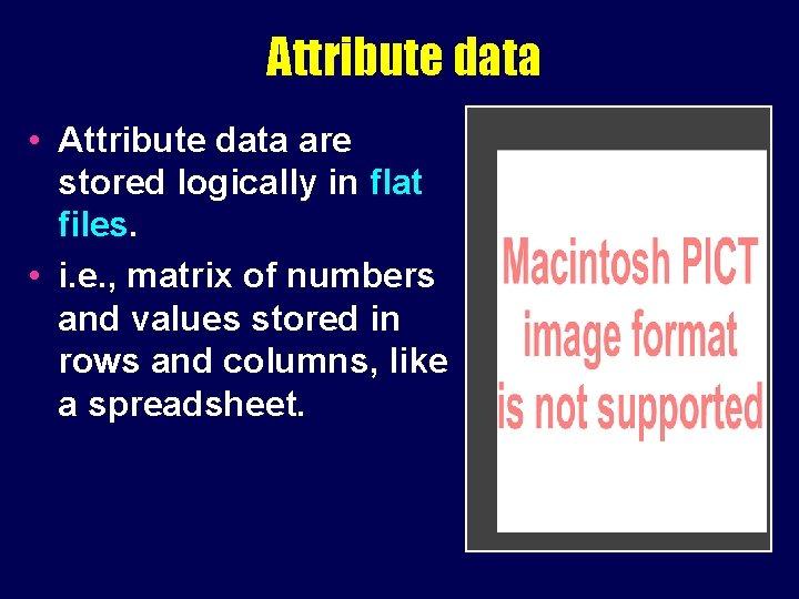 Attribute data • Attribute data are stored logically in flat files. • i. e.