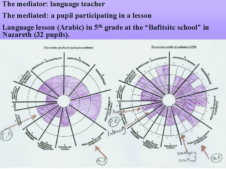 The mediator: language teacher The mediated: a pupil participating in a lesson Language lesson
