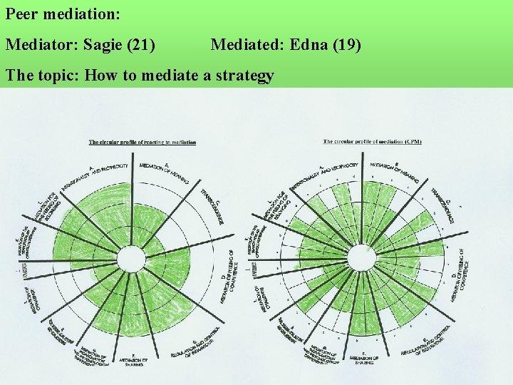 Peer mediation: Mediator: Sagie (21) Mediated: Edna (19) The topic: How to mediate a