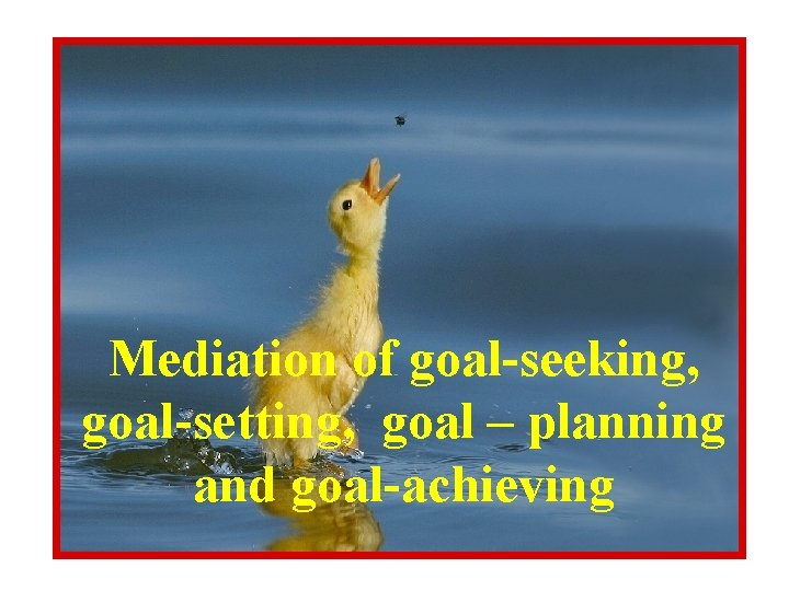 Mediation of goal-seeking, goal-setting, goal – planning and goal-achieving