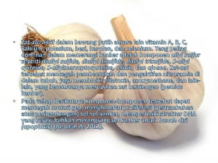 • Zat-zat aktif dalam bawang putih antara lain vitamin A, B, C, kalsium,
