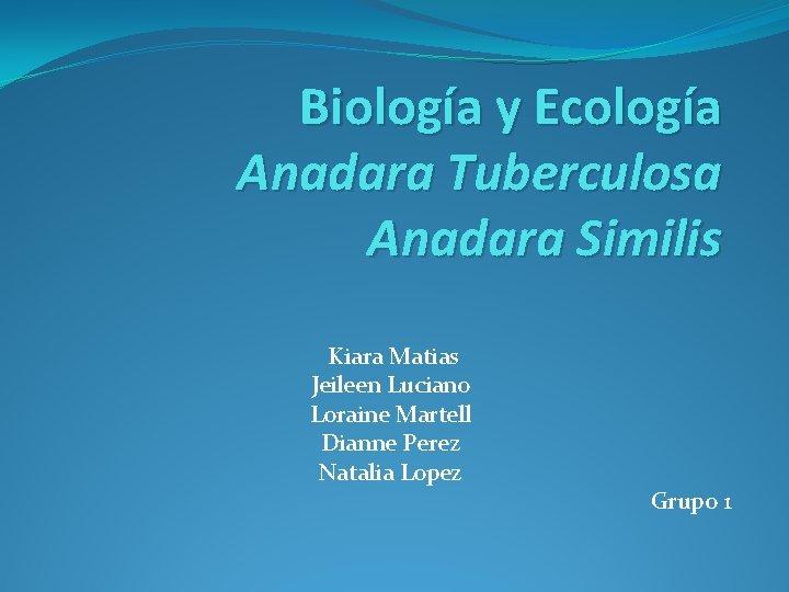Biología y Ecología Anadara Tuberculosa Anadara Similis Kiara Matias Jeileen Luciano Loraine Martell Dianne