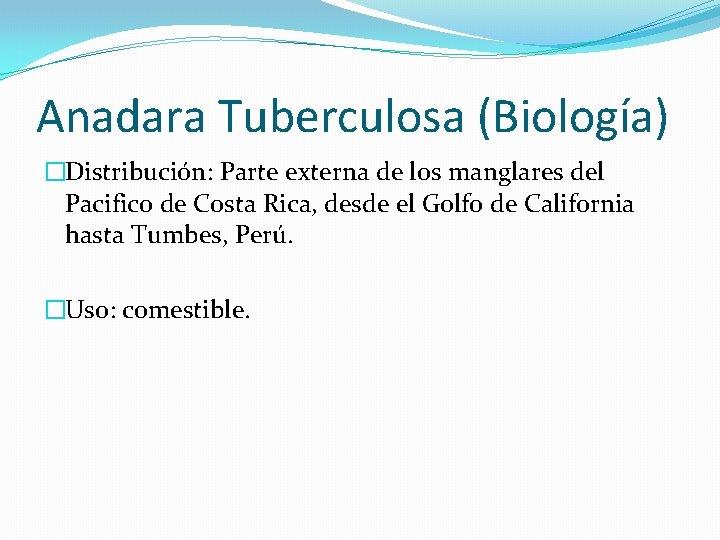 Anadara Tuberculosa (Biología) �Distribución: Parte externa de los manglares del Pacifico de Costa Rica,