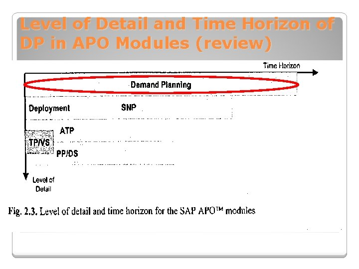 Level of Detail and Time Horizon of DP in APO Modules (review)