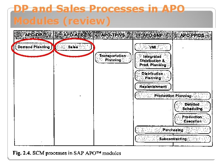 DP and Sales Processes in APO Modules (review)