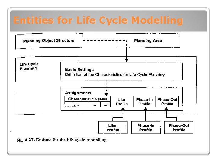 Entities for Life Cycle Modelling