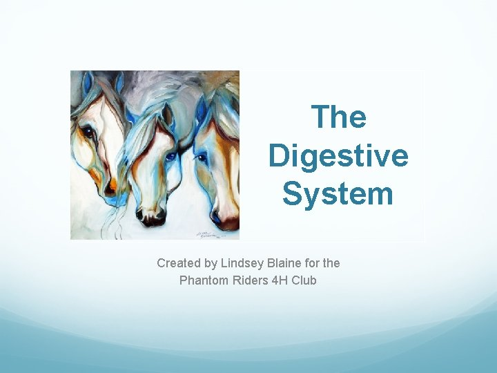 The Digestive System Created by Lindsey Blaine for the Phantom Riders 4 H Club