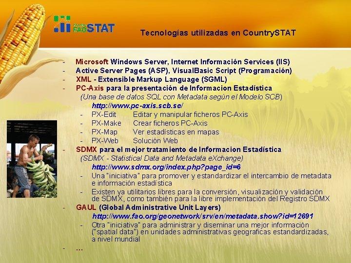 Tecnologías utilizadas en Country. STAT - - Microsoft Windows Server, Internet Información Services (IIS)