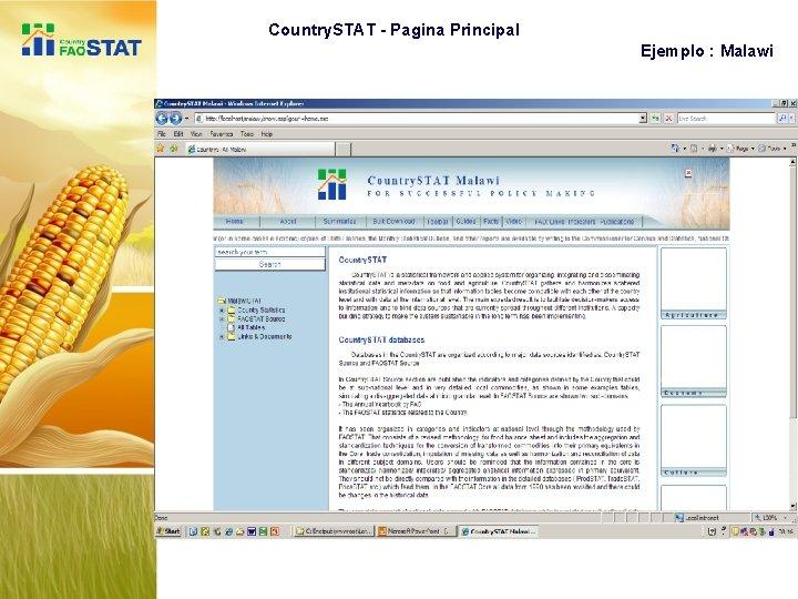 Country. STAT - Pagina Principal Ejemplo : Malawi