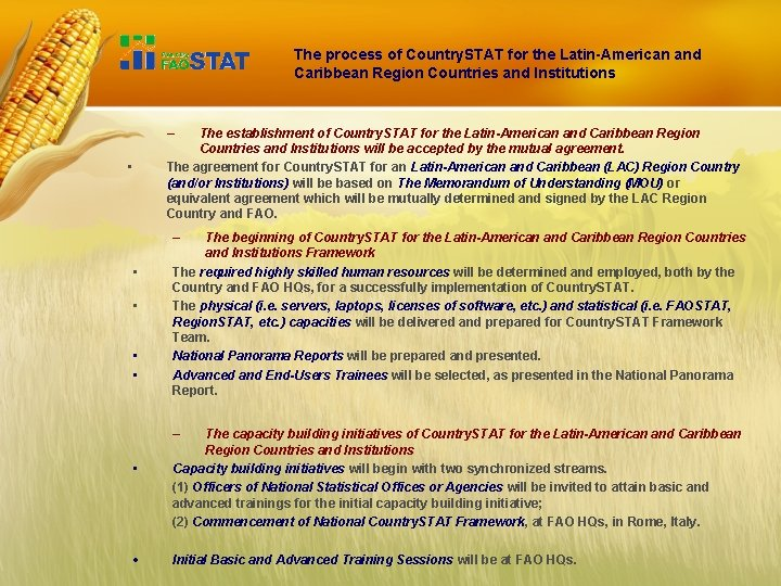 The process of Country. STAT for the Latin-American and Caribbean Region Countries and Institutions
