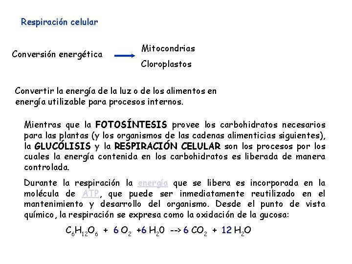 Respiración celular Conversión energética Mitocondrias Cloroplastos Convertir la energía de la luz o de