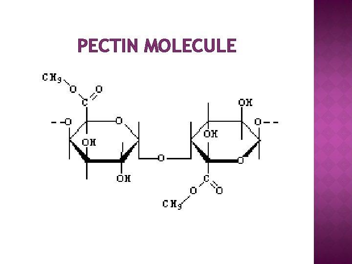 PECTIN MOLECULE