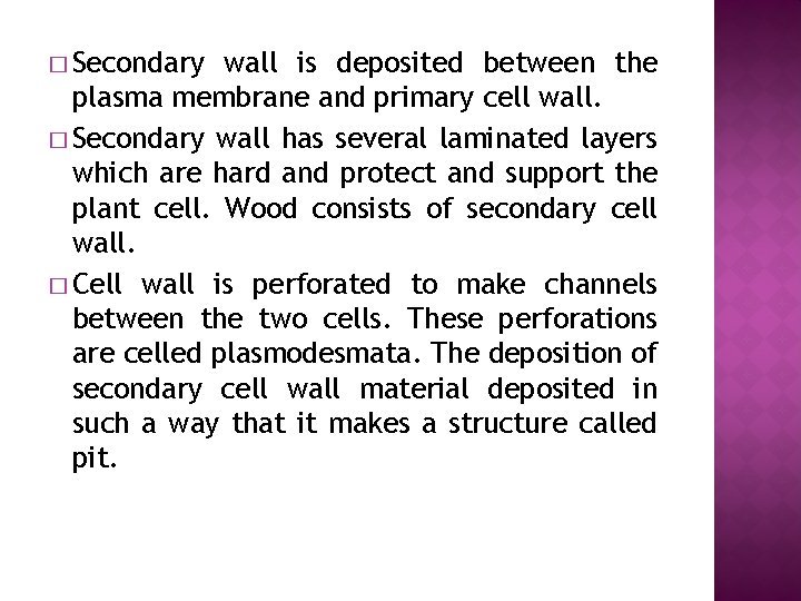 � Secondary wall is deposited between the plasma membrane and primary cell wall. �