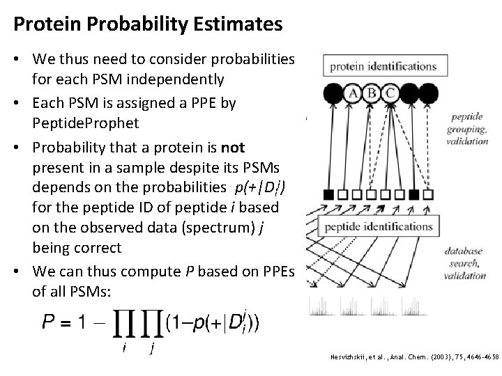 Protein Probability Estimates • We thus need to consider probabilities for each PSM independently