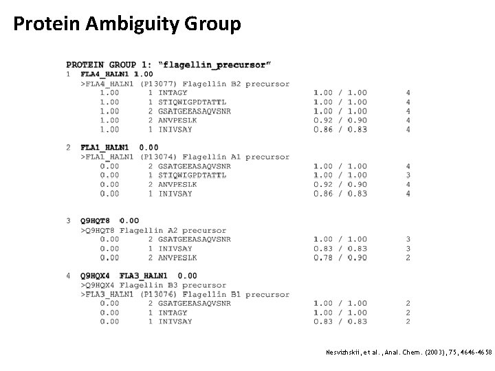Protein Ambiguity Group Nesvizhskii, et al. , Anal. Chem. (2003), 75, 4646 -4658