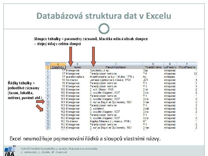 Databázová struktura dat v Excelu Sloupce tabulky = parametry záznamů, hlavička udává obsah sloupce