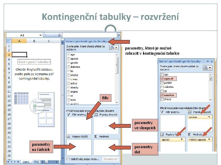 Kontingenční tabulky – rozvržení parametry, které je možné zobrazit v kontingenční tabulce filtr parametry