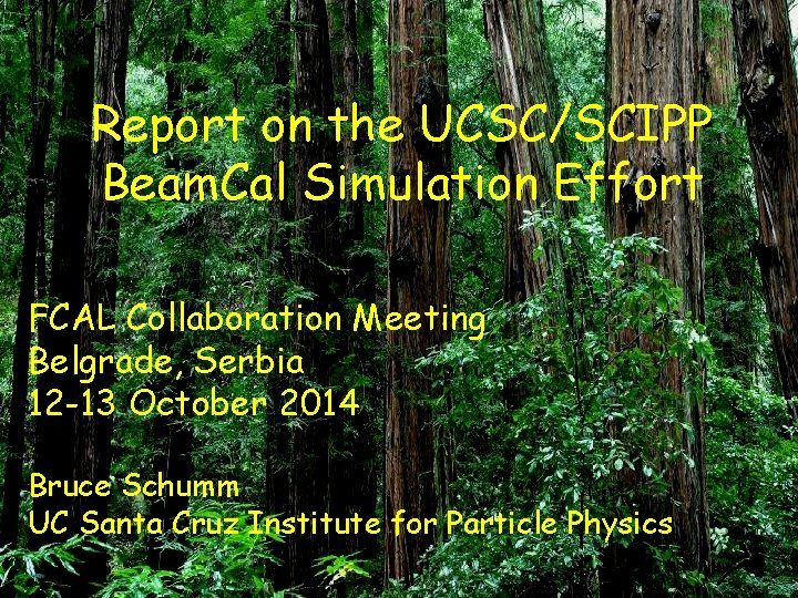 Report on the UCSC/SCIPP Beam. Cal Simulation Effort FCAL Collaboration Meeting Belgrade, Serbia 12