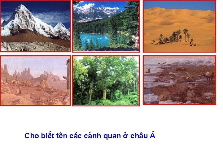 Cho biết tên các cảnh quan ở châu Á